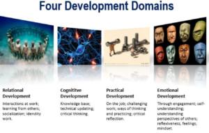 four development domaninspng